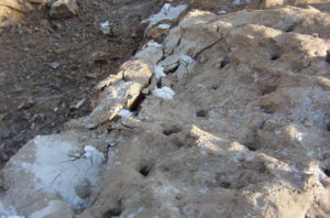 Zanjeo con cemento expansivo